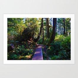 Trail to the beach, Tofino BC Art Print