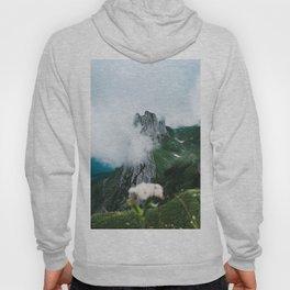 Flower Mountain in Switzerland - Landscape Photography Hoody