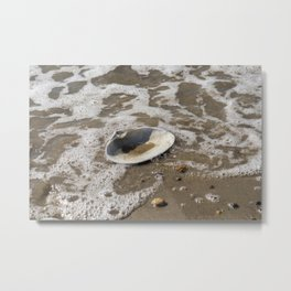 Clam shell against the tide Metal Print