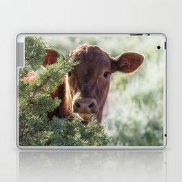 Shy Calf Laptop & iPad Skin