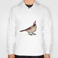 cardinal Hoodies featuring Cardinal by Sarah Jane Rozman