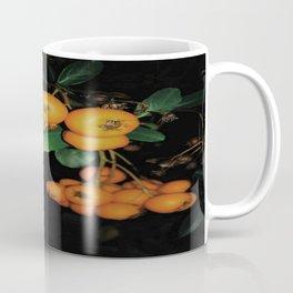 squirrel food Coffee Mug