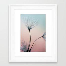 dandelion - sprinkles of love Framed Art Print