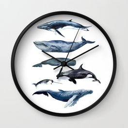 Watercolor Whales, Cetaceans, Whale Cetacea Wall Clock