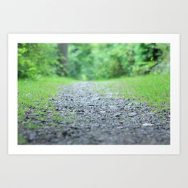 Summer Path Art Print