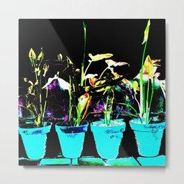 PLANTES Metal Print