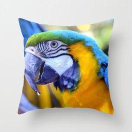 Parrots of Florida Throw Pillow