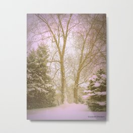 on a february morning  Metal Print