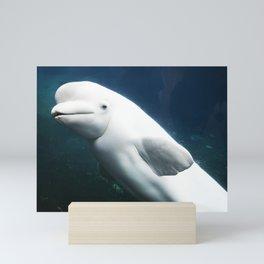 beluga whale water underwater sea Mini Art Print