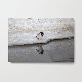 Penguin looking at him self Metal Print