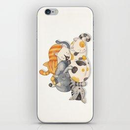 Cat Nap (Siesta Time) iPhone Skin