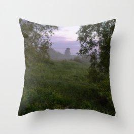 Dawn in a field Throw Pillow