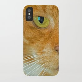 FELINE ORANGE iPhone Case
