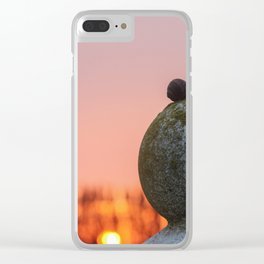 romantic snails on sunset ball Clear iPhone Case