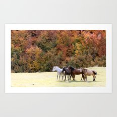 Horses Valley Art Print