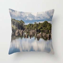 Dead Lakes Florida  Throw Pillow
