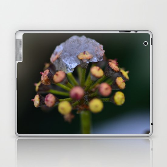 Snow On The Wild Ivy Laptop & iPad Skin