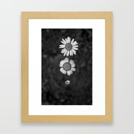 Old, young and toddler Daisy Framed Art Print