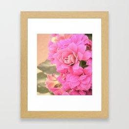 peach colored flower Framed Art Print