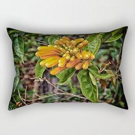 Beautiful buds of orange trumpet flower Rectangular Pillow