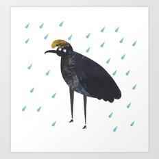 U is for Umbrella bird Art Print