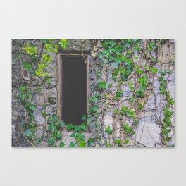 wood window Canvas Print