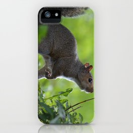 A Moment of Indecision iPhone Case