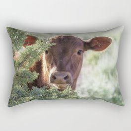 Shy Calf Rectangular Pillow