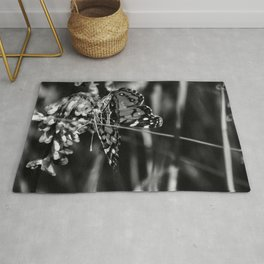 American Lady Butterfly in Black and White Rug