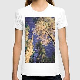 Startrails T-shirt