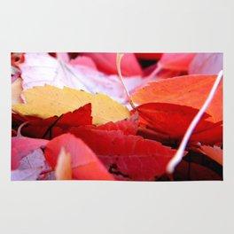 Autumn Glow Rug
