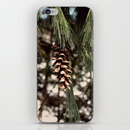 The Last Pine Cone iPhone Skin