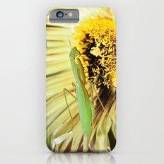 Praying Mantis iPhone 6 Slim Case