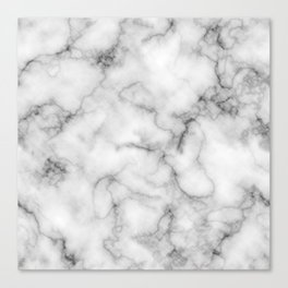 WHITE MARBLE Canvas Print