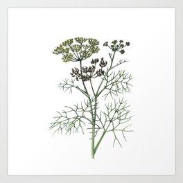 watercolor flower 2 . art Art Print