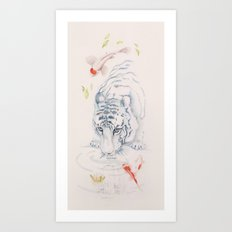 The Tiger and the Koi fish pond  Art Print