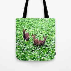 deers in the field. Tote Bag
