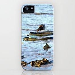 Trash Bird, #1 iPhone Case