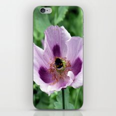 Poppy and Bee iPhone & iPod Skin