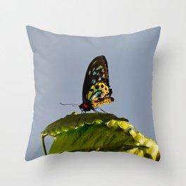 The Queen Alexandra Bird Wing Butterfly by Teresa Thompson Throw Pillow