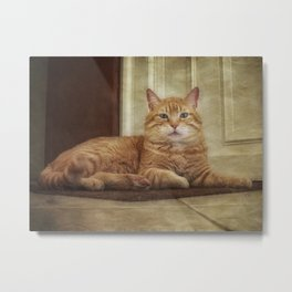 Cattitude Is Everything. Metal Print