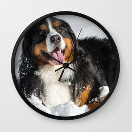 Happy Bernese Mountain Dog in the Snow Wall Clock