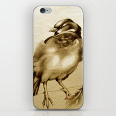 Sparrow With Feather iPhone Skin