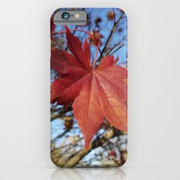 Maple leaf center stage iPhone Case