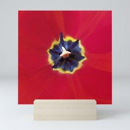 Seeing red (at tulip time) Mini Art Print