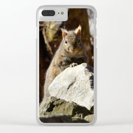Cute Squirrel by Teresa Thompson Clear iPhone Case