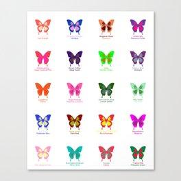 Butterflies 20 Canvas Print