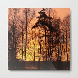 Early Morning in November Metal Print