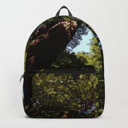 Sequioas Reaching  For The Sky Backpack