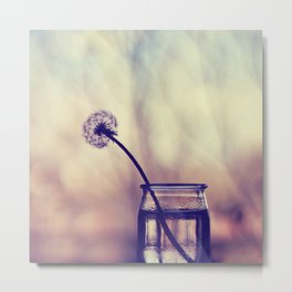 dandelion morning Metal Print